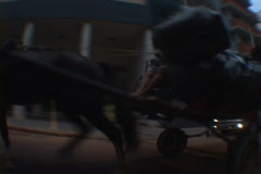 Uruguay-Horse-Drawn-Trash-Collector Stock Footage