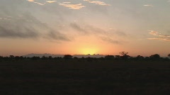 Sunrise tarangire national parc Stock Footage