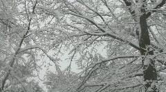 New York City February 2010 Blizzard Stock Footage