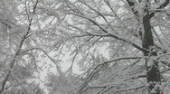 New York City February 2010 Blizzard Stock Footage