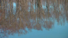 Sunset Pond 3 - Trees Reflection Stock Footage