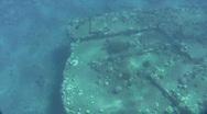Sea Turtle ontop Mala Wharf wreckage  Stock Footage
