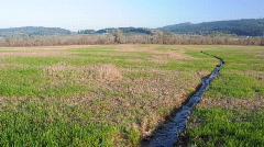 Narrow Stream In Field Stock Footage