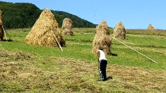Hayfield Stock Footage