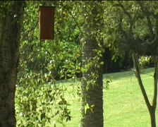 Meditation outdoor yoga Stock Footage