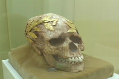 Skull of a gold wreathed victorious ancient games athlete and coin for the Stock Footage