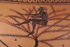 Black figure amphora depicting olive tree, olives, harvest laborers Stock Footage