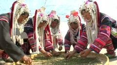 Akha Women Sorting Tea Stock Footage