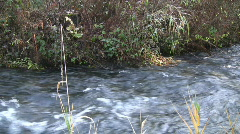 Creek Stock Footage
