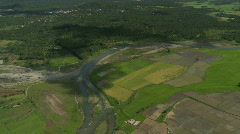 Aerial of flooded rice fields along a coconut plantation  palm tree Stock Footage