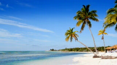 Deserted Tropical Island Background Stock Footage