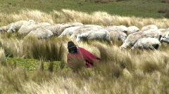 Traditional Ecuadorian Shepherd, Quilotoa, Ecuador Stock Footage