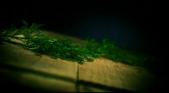Dill on the Kitchen Board Stock Footage