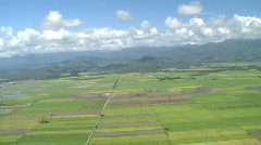 Aerial over rural area with green fields Stock Footage