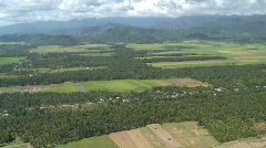 Aerial over rural area with green fields and coconut plantation Stock Footage