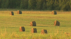 Haymaking Stock Footage