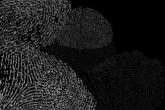Fingerprints loop alpha - stock footage
