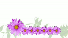 Rotating Flower Border with Vine Stock Footage