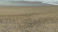 Seashell Sand Stock Footage