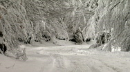 Mountain road covered with snow in the forest Stock Footage