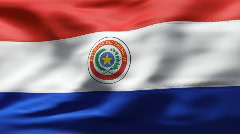 Paraguai Flag in wind in slow motion Stock Footage