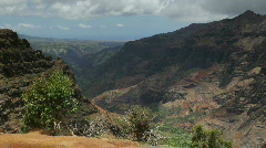 Waimea Canyon from Canyon Trail, Kauai, Hawaii Stock Footage