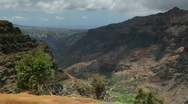Waimea Canyon from Canyon Trail, Kauai, Hawaii Stock Footage