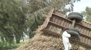Stock Video Footage of Upturned Tractor in a Rural Village, Pakistan