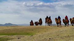 Camel caravan - stock footage