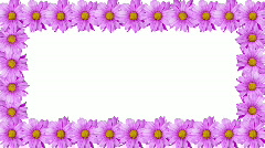 Rotating Flower Border Stock Footage