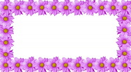 Stock Video Footage of Rotating Flower Border