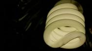 Energy-saving bulb Stock Footage