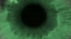 green eye track - stock footage