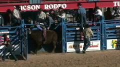 Bull Wild Ride Stock Footage