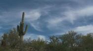 Saguaro Clouds Time Lapse Stock Footage