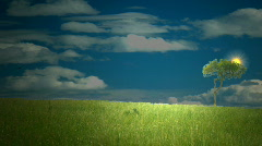 Bright Sunny Day Stock Footage