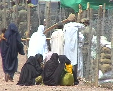 Women in Burqa Sitting - stock footage