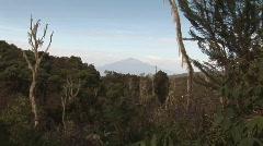 Panorama Mount Kilimanjaro Stock Footage