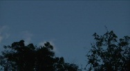 Clouds Passing Behind Silohuetted Trees near Haiti Stock Footage