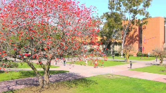 California University Campus Time Lapse Stock Footage