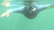 Stock Video Footage of Snorkler Swims towards camera