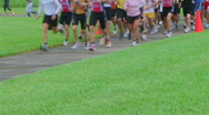 Runners Starting Race Stock Footage