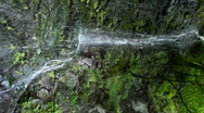 Stock Video Footage of vertical video, waterfall in forest, sochi, russia