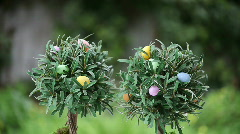 Songbird on tree with Easter eggs Stock Footage