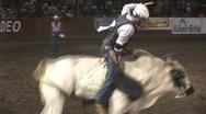 Spinning bull ride Stock Footage