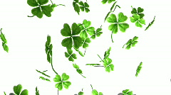 Falling shamrock leaves. Saint Patrick's day. Stock Footage