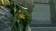 Cemetery Graves with Flowers - 02 Stock Footage