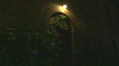 Green, Lion Knocker Door Element / Location / Exterior - 05 Stock Footage