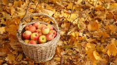 Hand picking up basket with apples Stock Footage
