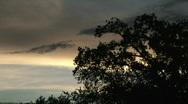 Bayou Silhouettes Time Lapse - Louisiana - 01 Stock Footage